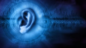 Can Hearing Be Restored by Making the Brain More Childlike?
