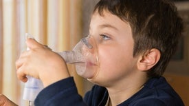 Early-Life Microbes Ward Off Asthma