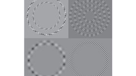 Straight Lines That Curve, Circles That Twist and Other Mind-Bending Illusions