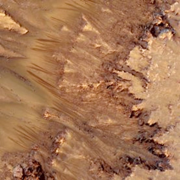 Mars Bars: Seasonal Markings on Martian Slopes Could Indicate Flowing Water
