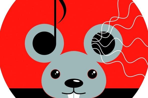 White Noise Helps Mice Distinguish Similar Tones
