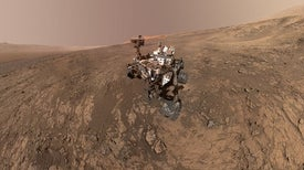 If We Found Life on Mars, How Would We Know?