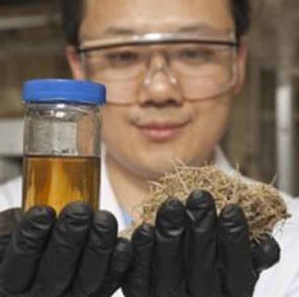 Building a Better Biofuel: A New Carbon-Neutral Approach Turns Carbohydrates into Hydrocarbons