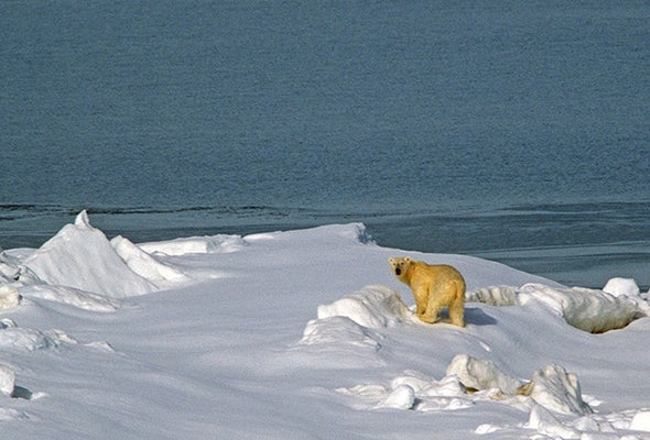 Have We Passed the Point of No Return on Climate Change?