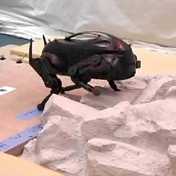 DARPA Pushes Machine Learning with Legged LittleDog Robot