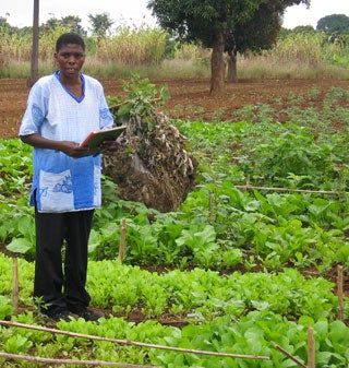 Is a Green Revolution Finally Blooming in Africa?