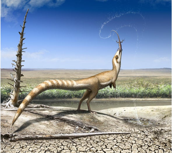 Camouflage Plumage Patterns Offer Clue to Dinosaur's Habitat
