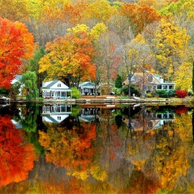 Fall Foliage Forecast Is Bright Only for Parts of the Northeast
