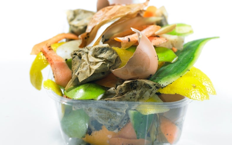 The First Comprehensive Look at Global Food Waste Is as Bad as You'd Expect
