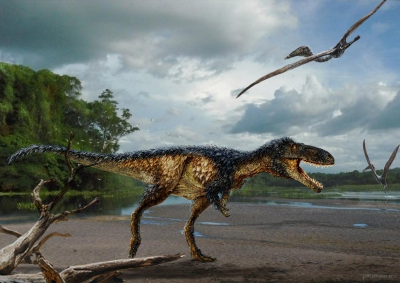 New Tyrannosaur Species Reveals How the King of the Dinosaurs Won Its Crown