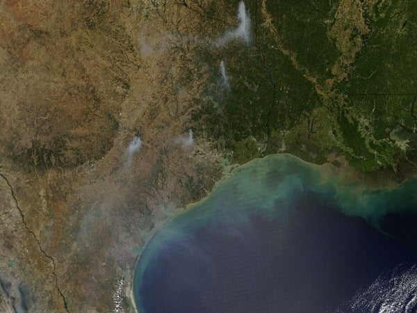 Wildfires Rage across Drought-Stricken Texas