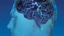 The Brain's Dark Energy
