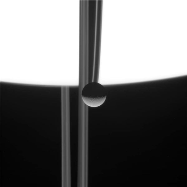 Saturnian trifecta: The planet, its rings and a moon