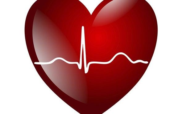 Biometric Identifies You in a Heartbeat