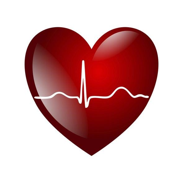 Biometric Identifies You in a Heartbeat - Scientific American