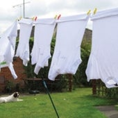 Laundry Hangout
