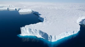 Antarctica's Ice Shelves Have Lost Millions of Metric Tons of Ice
