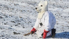 Why This Scientist Wears a Polar Bear Suit to Work