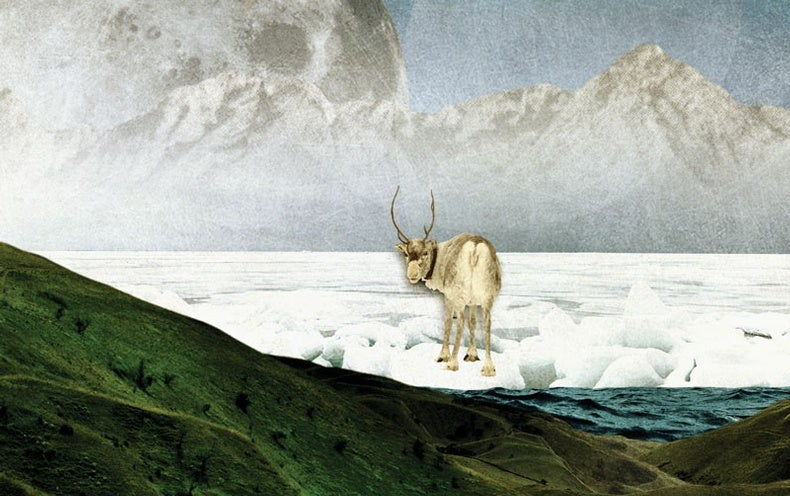 Illustration of an animal in the changing arctic