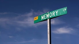 New Experiences Can Strengthen Old Memories