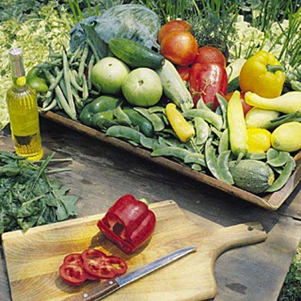 "How to Build a ""Greener"" Backyard Garden"