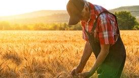 Presidential Candidates Ignore Farming, Despite Iowa Caucus