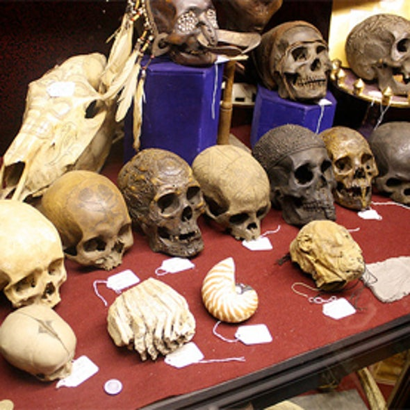 Carbon Dating Gets a Reset