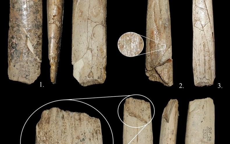 Prehistoric Tools Show Modern Humans' Skills [Slide Show]