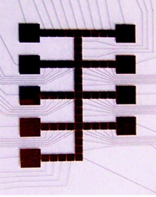 Organelle Simulated on Microchip for First Time