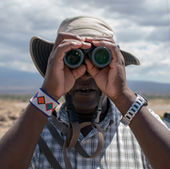 Project manager Raphael Mututua searches for the baboons he will be studying that day.