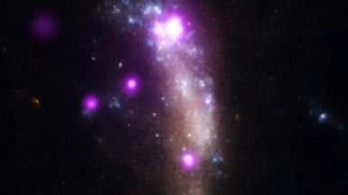Supernova Reveals Origins of Universe's Dust