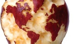 5 Steps to Feed the World and Sustain the Planet