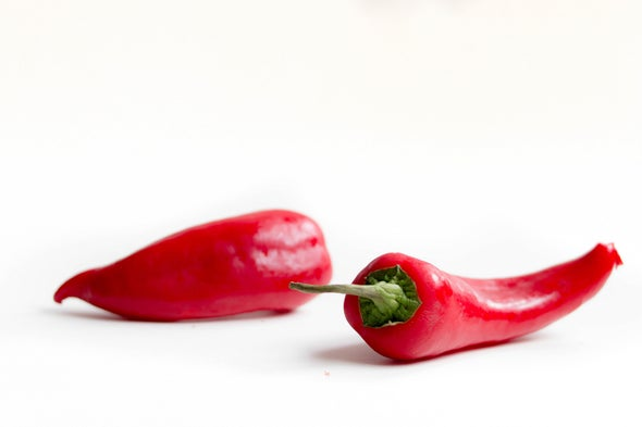 Hot Chilies Cool Down Gut Inflammation in Mice