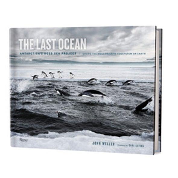 Book Review: <em>The Last Ocean</em>