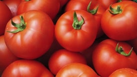 Traces of Pharmaceuticals Dwell in Wastewater-Grown Veggies