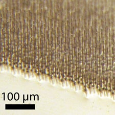 silicon-microwires