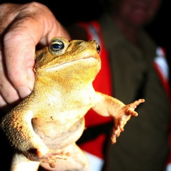Alien Invasion? An Ecologist Doubts the Impact of Exotic Species