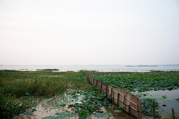 China Tries to Clean Up Its Fish Farms [Slide Show]