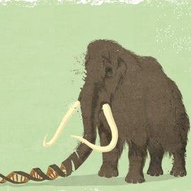 George Church: De-Extinction Is a Good Idea