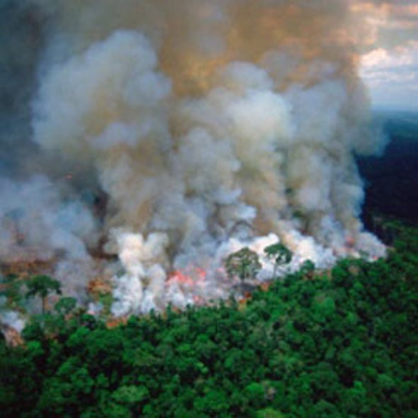 Airborne Analysis of Burning Amazon Forests Could Close Climate Model Gaps