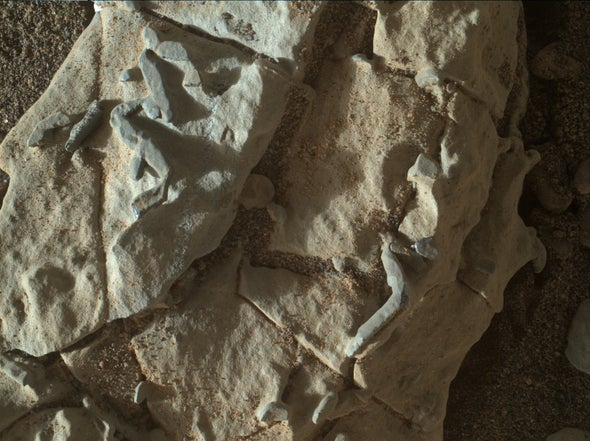 """Weird """"Tubes"""" on Mars Are Probably Not Signs of Life"""