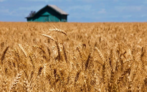 U.S. Crop Harvests Could Suffer with Climate Change