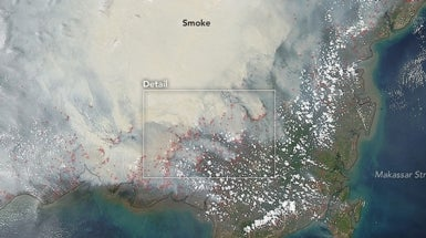 Obama Pushes Indonesia to Save Burning Peat Forests