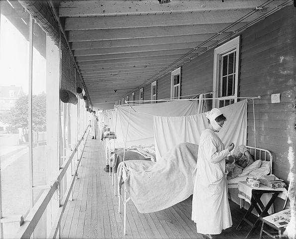 Study Revives Bird Origin for 1918 Flu Pandemic