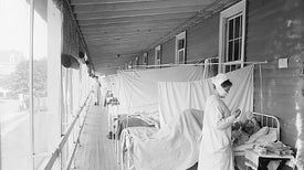 Study Revives Bird Origin for 1918 Flu Pandemic