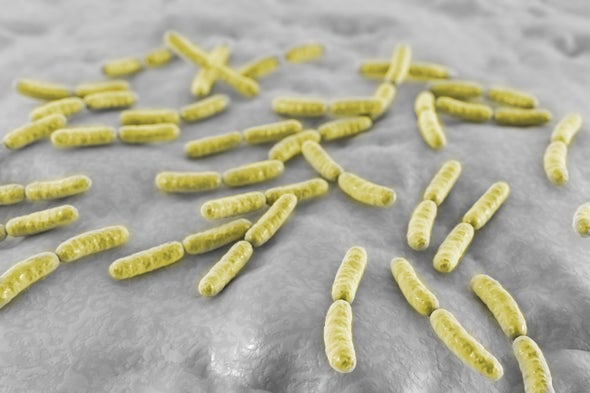 Decoding the Vaginal Microbiome