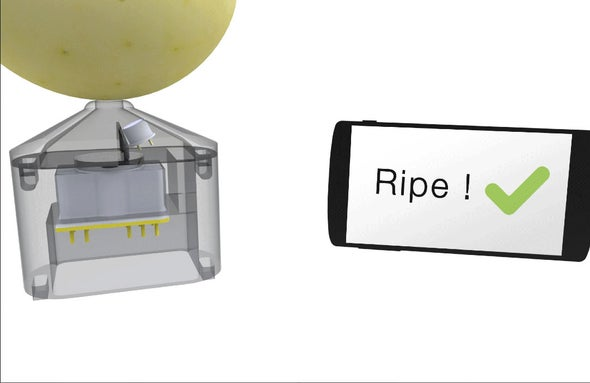 How to Use Your Smartphone to Pick the Best Apples