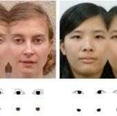 Yang's Iris Illusion