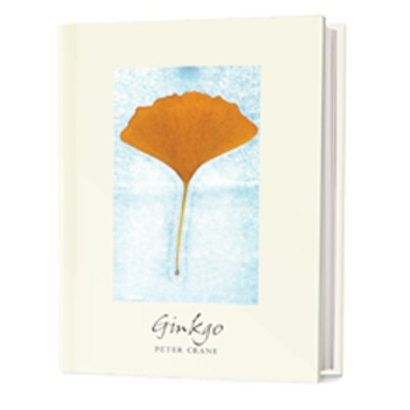 Recommended: <i>Gingko</i>