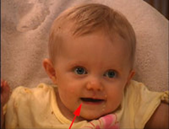 Babies' Babbles Linked to Brain's Language Center